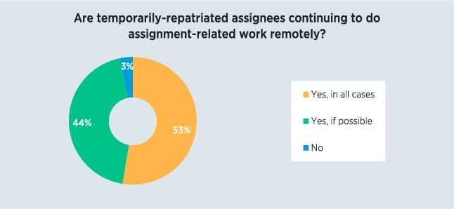 Survey Respondents - assignees working remote